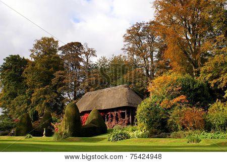 outdoor scene in Autumn or the fall season