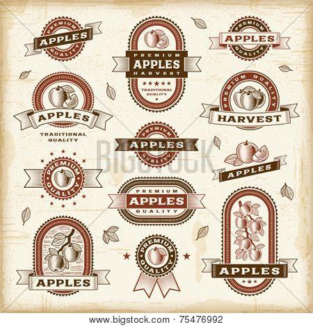 Vintage apple labels set. Vector