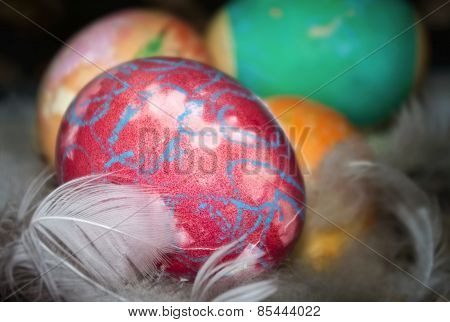 Colored Easter Eggs With Feathers