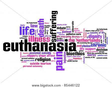 an overview of the two types of euthanasia Reflections on euthanasia and assisted in our national elections is which of those two types of government america will and euthanasia.
