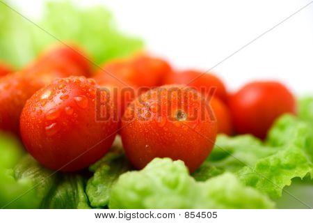 frische Baby-Tomaten