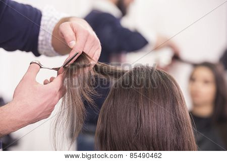 Close-up hairdresser cutting hair a woman in hairdresser salon. poster
