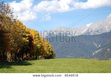 Fall In Austrian Alps