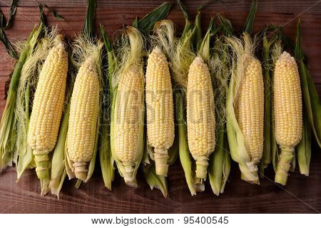 Several fresh picked and shucked corn on the cob ears on a rustic wood table. The sweet corn is shot from a high angle in horizontal format.