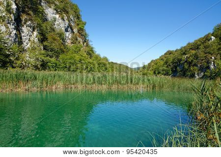 Pond bank landscape in bright summer day in Plitvice Croatia