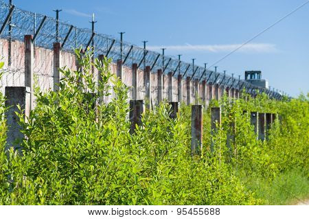Blurred Background Of Prison Wall And Sharp Wire Barbs Coiled