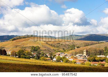 village Salles-Arbuissonnas-en-Beaujolais with vineyard, Rhone-Alpes, France