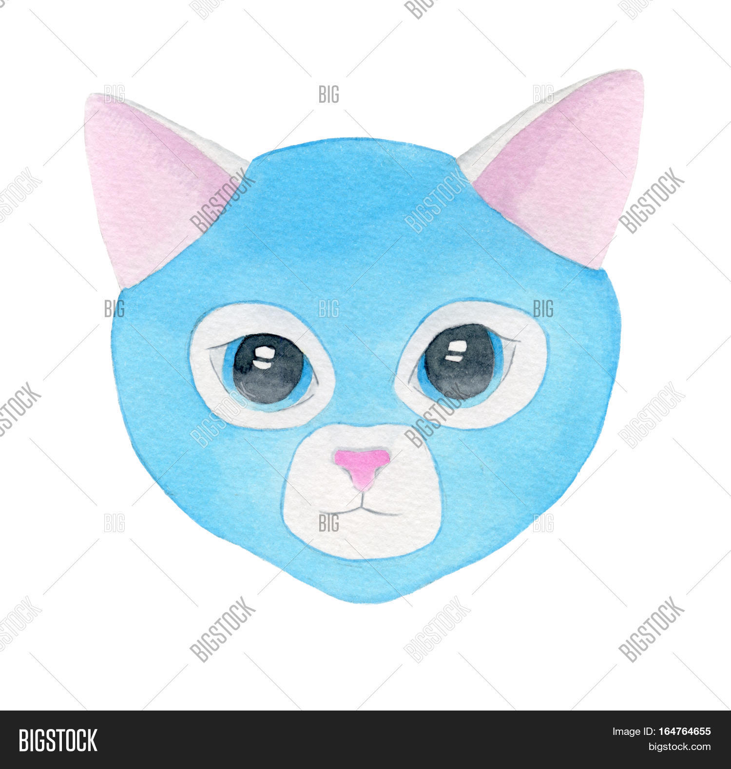 Cat Fighter  Luchador Image & Photo (Free Trial) | Bigstock
