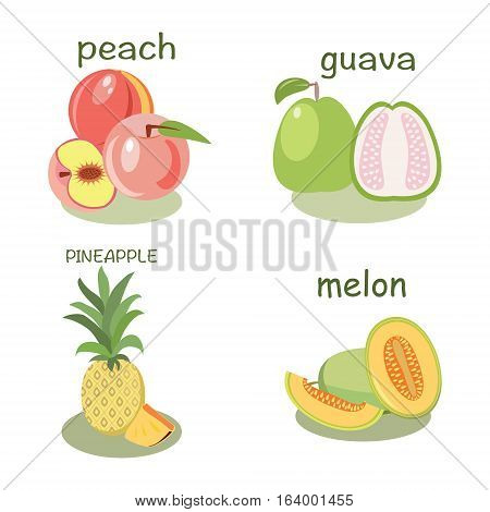 Vector fruits peach guava melon pineapple isolated in flat style Healthy food fruit vector illustration