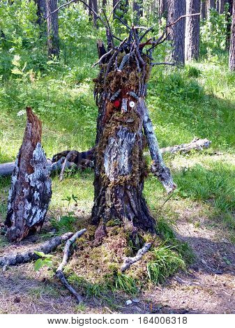Wood goblin - the hero of Russian fairy tales. He lives in the forest. Folk-lore.