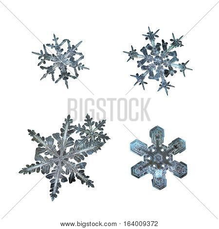 Set with snowflakes isolated on white background. This is macro photo of real snow crystals (large stellar dendrites with long, ornate arms and fine symmetry), arranged as square grid.