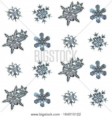 Set with snowflakes isolated on white background, arranged in square grid. This is macro photos of real snow crystals: large stellar dendrites with ornate arms and complex structure.
