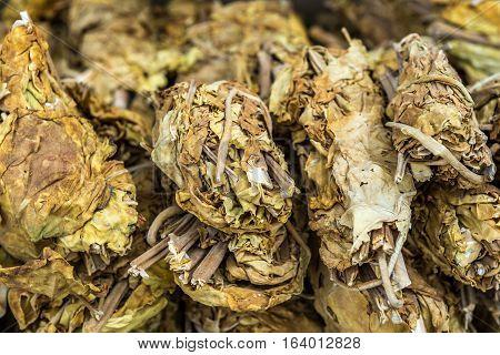 Tobacco leaves for sale in Shiraz city in Iran