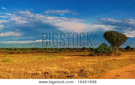 African savanna and Rwenzori Mountains, Queen Elizabeth National Park, Uganda