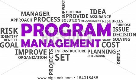 A word cloud of program management related items