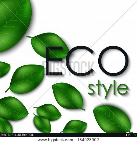 Eco Style Leaves Design Elements