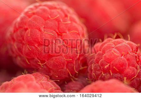 Raspberry Supermacro