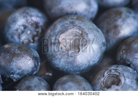 Fresh bluberries. Supermacro selective focus, color image