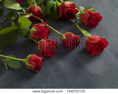 Beautiful group of roses on a grey background for a funural