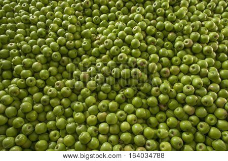 Green and juicy granny smith apple pile at the local farmers market. Texture of colored apples.