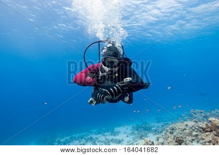 Scuba diver floating over coral reef in the Red Sea and looking to the camera.