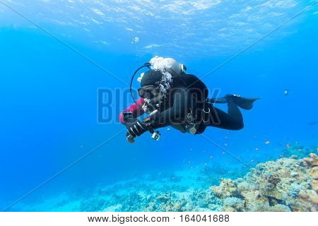 Scuba diver floating over coral reef in the Red Sea.