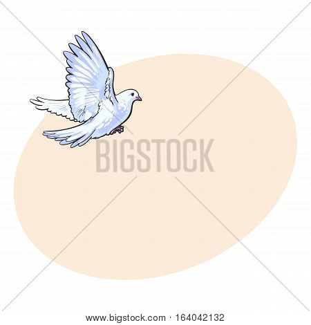 Free flying white dove, sketch style vector illustration isolated on background with place for text. Realistic hand drawing of white dove, pigeon flapping wings, symbol of love, romance and innocence, marriage icon