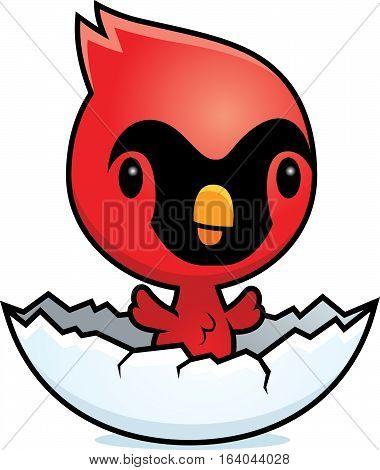 Cartoon Cardinal Egg