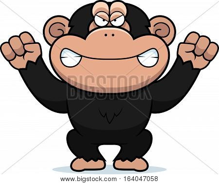 Angry Cartoon Chimp