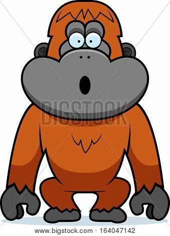 Orangutan Surprised