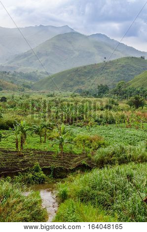 River, plantations, mountains and lush green tropical vegetation on overcast day at Ring Road, Cameroon, Africa.