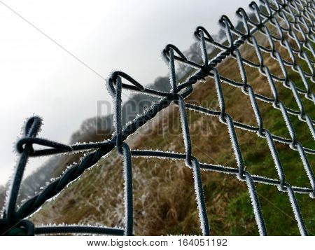 Ice crystals on a green wire mesh fence in winter