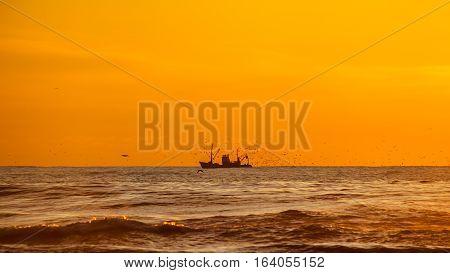 Seiner On A Black Sea, Poti, Georgia