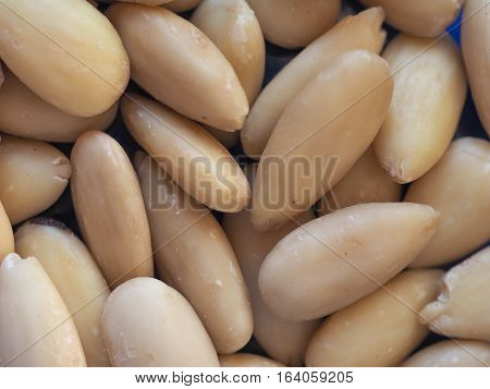 almonds (Prunus dulcis or Prunus amygdalus) food useful as a background