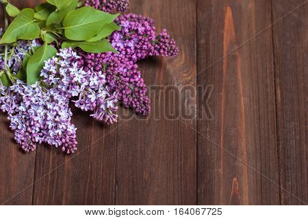 Beautiful Lilac On A Wooden Background. Branches Of Lilac On A Dark Background. Spring Flowers.