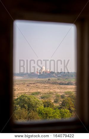 taj mahal as seen from agra fort with a natural frame