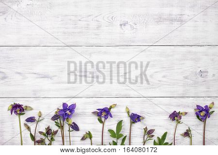 Bluebell flowers on white wooden table. Top view with copy space
