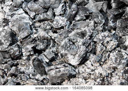 ashes of burned wood. Background texture coal