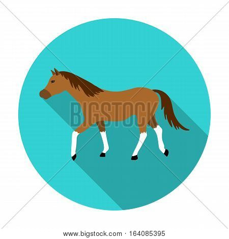 Horse icon in flat design isolated on white background. Hippodrome and horse symbol stock vector illustration.