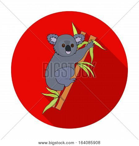 Australian koala icon in flat design isolated on white background. Australia symbol stock vector illustration.