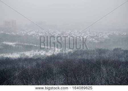 view of the city in a blizzard of snow with forest in the foreground