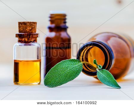 Closeup Bottles Of Sage Essential Oil For Aromatherapy With Sage Leaves On Wooden Background. Select