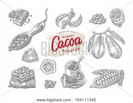 Set of engraving cocoa elements in a drawing style vector illustration