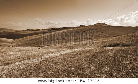 Stubble Fields on the Hills of Sicily at Sunset Vintage Style Sepia