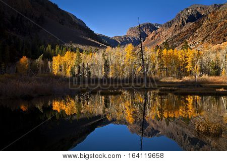 Lundy Canyon In Autumn With Fall Leaves On The Trees Reflecting In A Beautiful Pond. Part Of The Sie