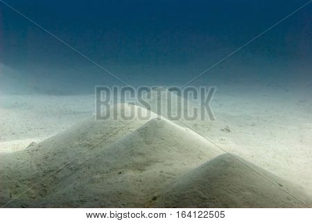 Sandy bottom seascape, color image, beuaty in nature