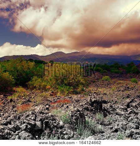 Congealed Black Lava on the Slopes of Mount Etna in Sicily at Sunset