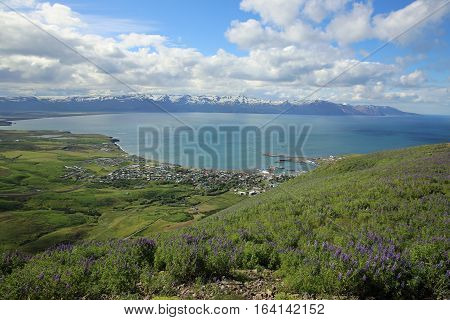 View to Husavik and the Coastline of Northern Iceland