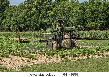 Tractor with sprayer arm attachment treating young tobacco plants in July.