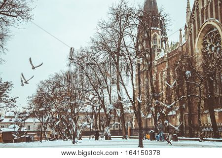 Ghotic Curch In Snow